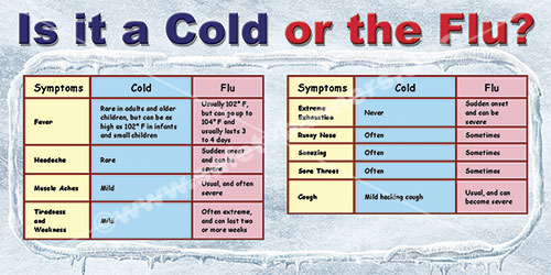 Is it a cold or the flu winter safety banner